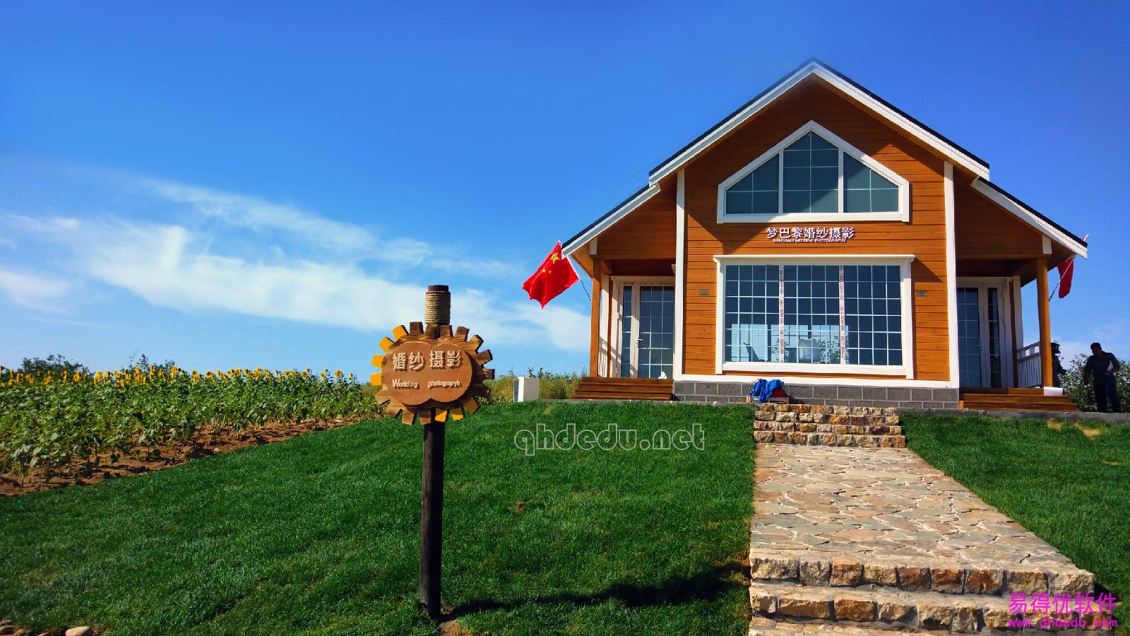 别墅海中的木屋湖雁鸣周围葵花图片